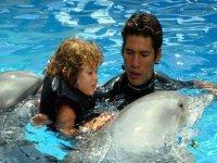 Abrazo a delfin