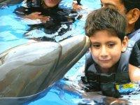 Nadando con un delfin