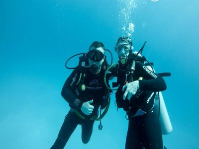 Eco Tours Adventure - Wildlife Encounters in Mexico Buceo