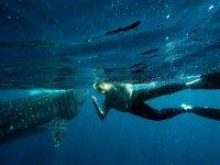 nadando con la naturaleza