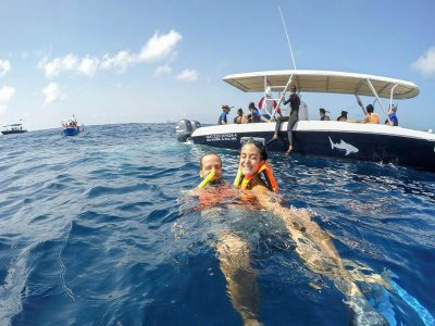 Eco Tours Adventure - Wildlife Encounters in Mexico Snorkel