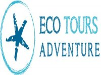 Eco Tours Adventure - Wildlife Encounters in Mexico Whale Watching