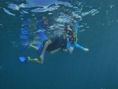 Tour  Whale Watching,snorkel y paseo en barco BCS