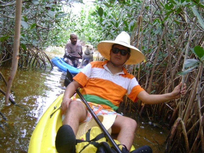 Kayaking tour across the swamps