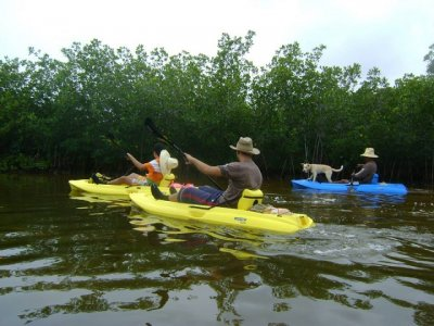 Halk a day kayaking in Santa Clara swamps