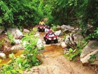 ATVs in the jungle of adventure