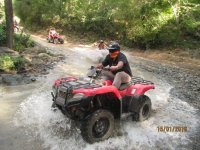 ATVs in the jungle
