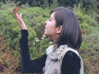 Interacting with the butterflies