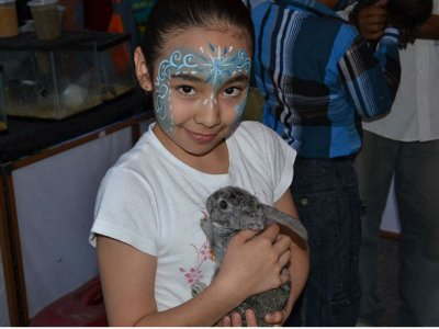 Children's farm at home for Puebla party