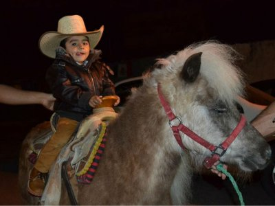 Farm show at home and 1 pony 2h in Puebla