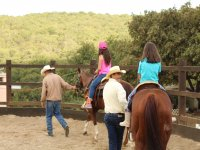 contacto con caballos