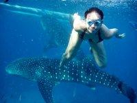 Snorkel con ballenaas