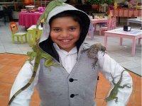 Disfrutando con las iguanas