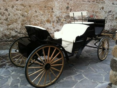Marriage proposal in a carriage ride + dinner