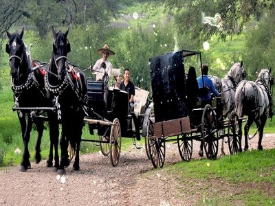 Special carriage ride on Valetine´s