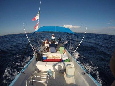 soliman bay tours Pesca
