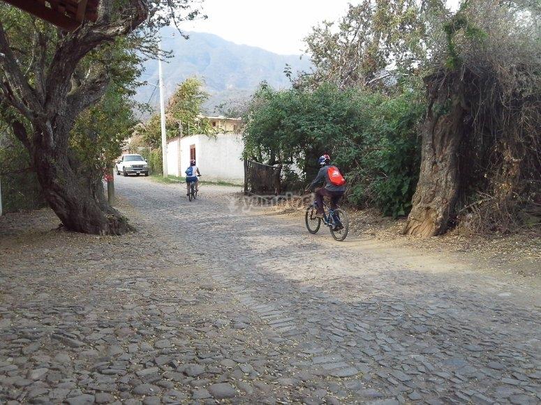 paseos en bici
