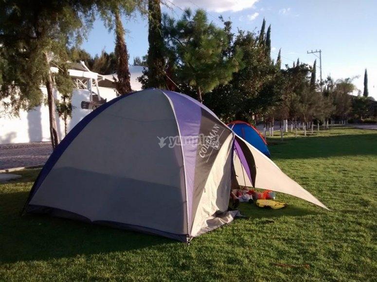camping familias
