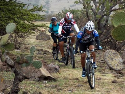 Coyotes Bike