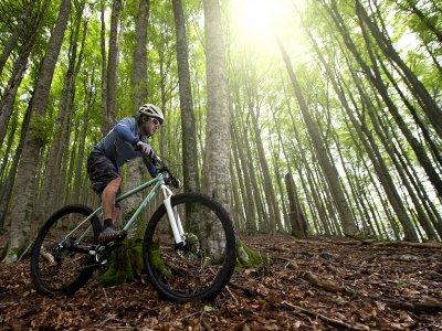 Al Final de la Senda Ciclismo de Montaña