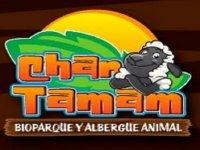 Chan Tamam Salones de Fiestas Infantiles