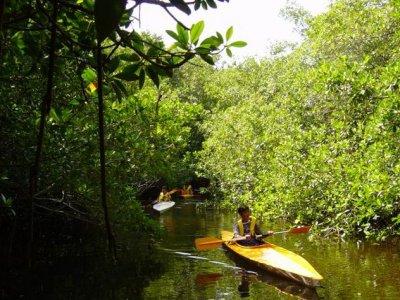 La Mancha en Movimiento Kayaks