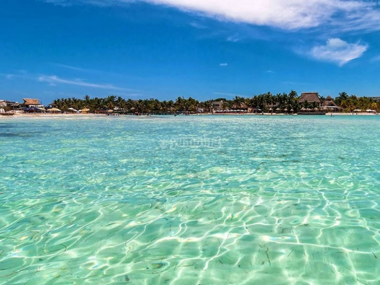 Enjoy the blue waters of the Mexican Caribbean