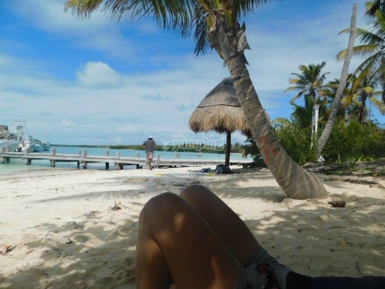 Hermosos paisajes en Isla Contoy