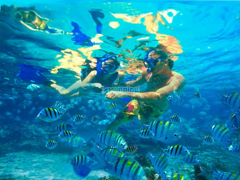 Niños haciendo snorkel