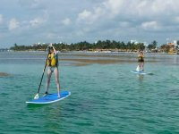 Actividad Paddle Surf