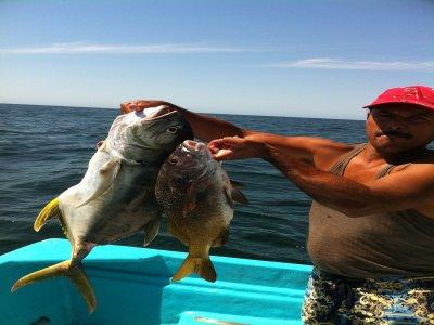 Sayulita Entourage Pesca