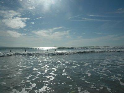 Sayulita Entourage Surf
