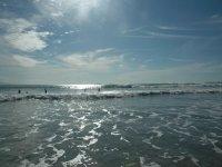 Excursiones de surf