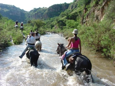 Coyote Canyon Adventures Cabalgatas
