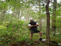 Caminatas por el bosque