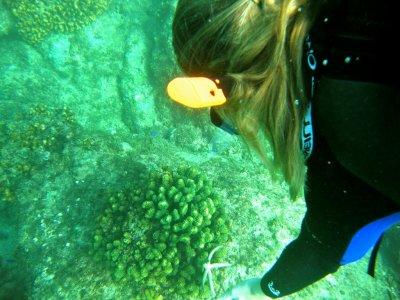 Snorkel en Dos Bahías en Los Cabos