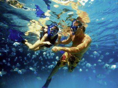 Wow EXcursions Snorkel