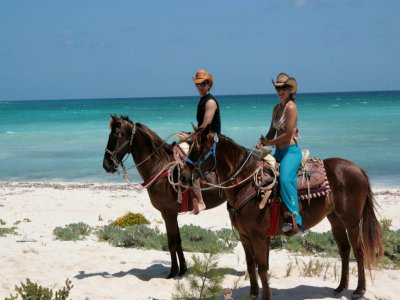 Wow EXcursions Cabalgatas