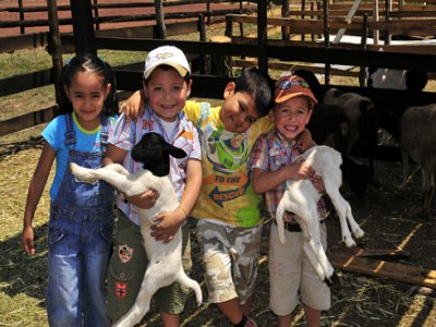 Fiesta infantil tematica granjero Tepoztzotlán