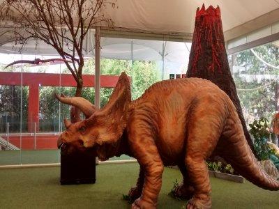 Show prehistórico personajes y escultura CDMX 3 hr