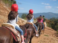 Horseback riding with horses through the valley
