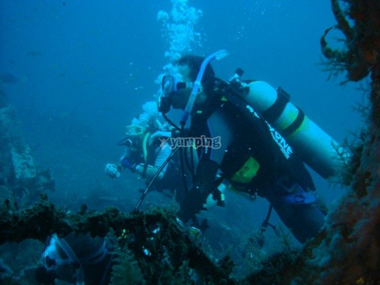 Scuba diving in Veracruz
