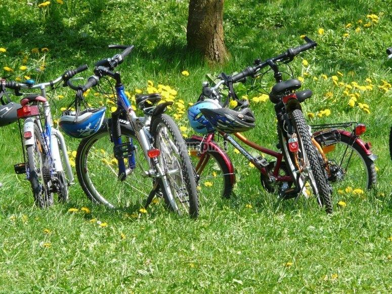 pasion en bicicleta