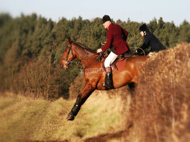 High school horseriding lessons