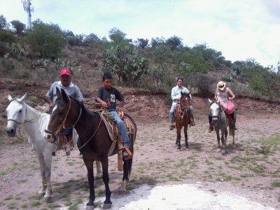 Horseback ride, zip-line and suspended bridge