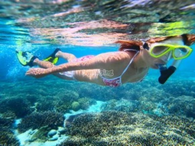 Ruta de snorkel