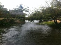 Pesca en la laguna