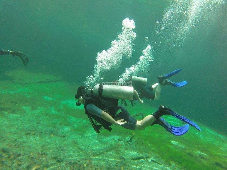 Buceando en arrecife