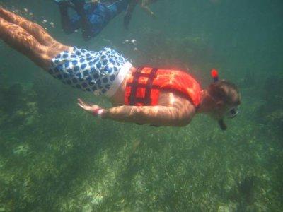 Snorkel clasico en Puerto Morelos