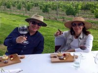 Tasting of 2 wines and tour in Queretaro